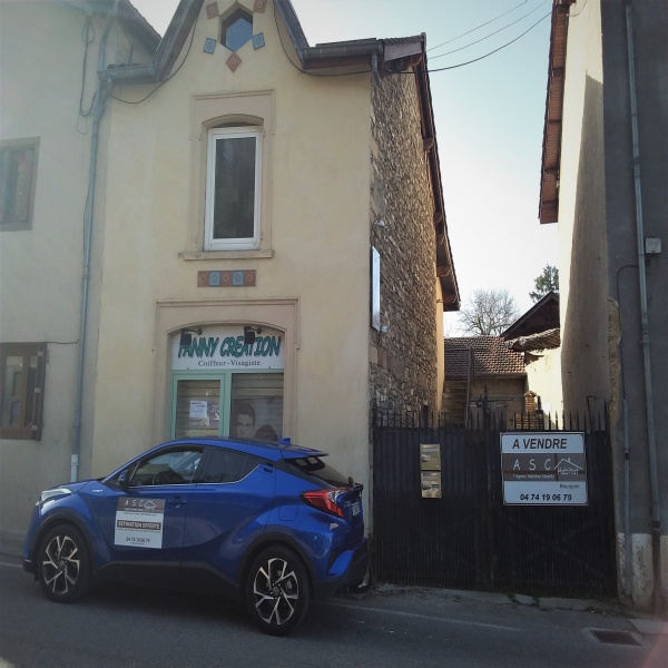 Vente Immobilier Professionnel Local commercial Saint-Chef 38890